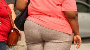 thick-373064_1920